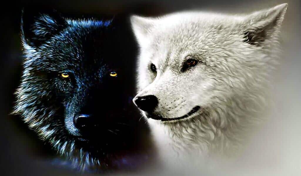 The Cherokee Legend of the Two Wolves